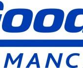 8014 14BFG20 BFG Performance Team Logo FNL_OL